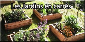 jardin carre-blog de doug-le blog de doug-eurodouglas-