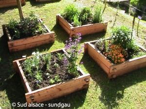 jardins ou potagers en carré