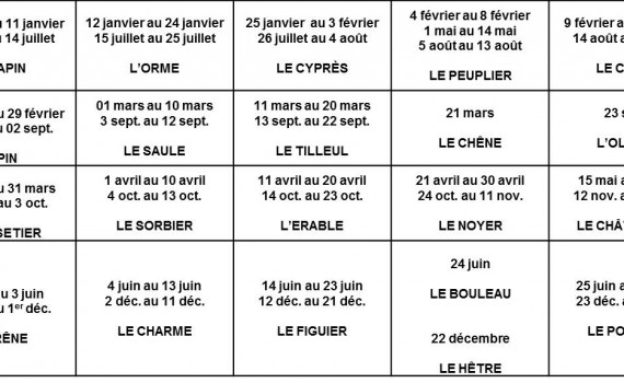 Tableau sommaire