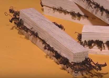 Et oui ! Souder du bois est possible, la preuve en image. Ici, on observe la présence de filaments bruns, résultat de cette soudure, qui seront enlevés après...